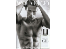 Zoom στο ARMANI ACQUA DI GIO POUR HOMME AFTER SHAVE LOTION 100 ml