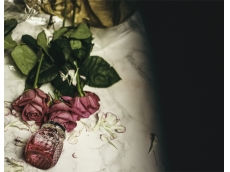 Zoom στο JIMMY CHOO BLOSSOM EDP 100ml SPR