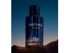 Zoom στο CHRISTIAN DIOR SAUVAGE  EDP 100ml SPR