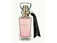 Zoom στο ONE DIRECTION BETWEEN US EDP 50ml SPR