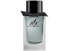 Zoom στο BURBERRY Mr BURBERRY EDT 100ml SPR